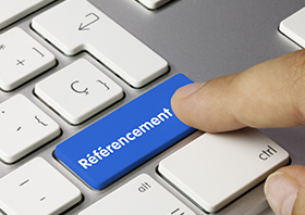 Referencement-1